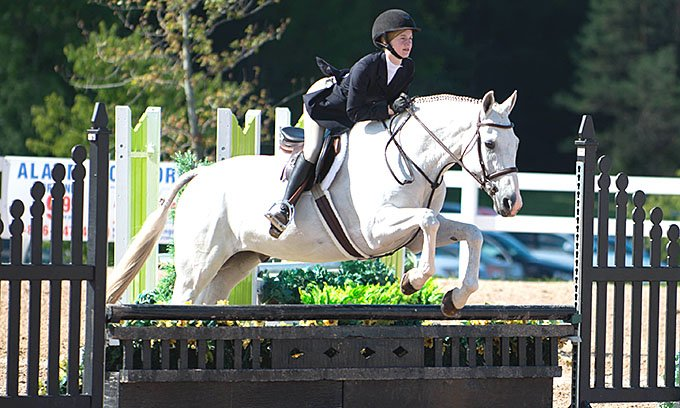 Taylor Brooks Equestrian at Wynbrook Farm Hunter Jumper Equitation Lessons and Training