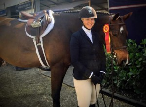 Winter Equestrian Festival Update